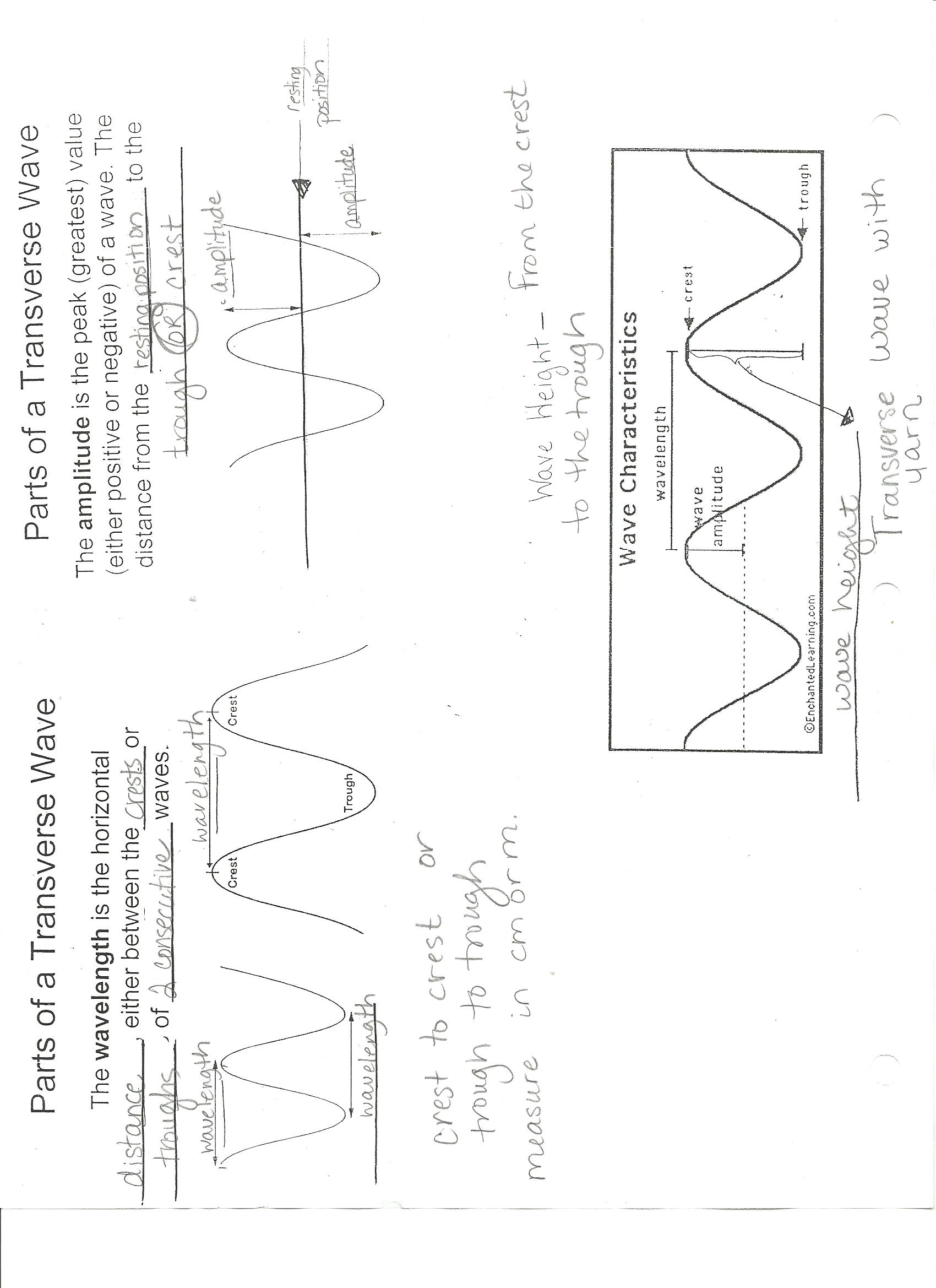 worksheet. Properties Of Waves Worksheet. Grass Fedjp ...
